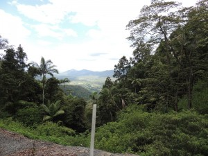 On the way to Eungella