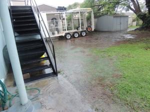 Tropical rain 2