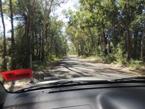 Drive to Mt Kaputar