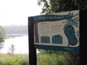 Lake Euramoo 2