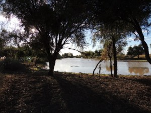 The Long Waterhole