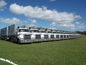 Qube Trucks
