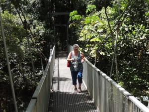 Mossman Gorge Bridge 2