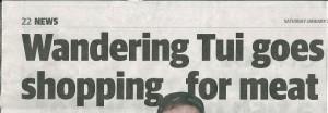 Paper Headline0002