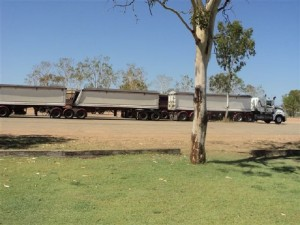 1.DINGOHOTELROADTRAINS
