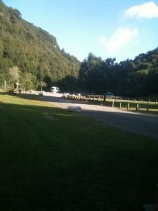 Free Camp Te Kuiti 2