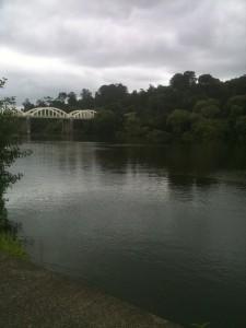 Waikato River Tuakau 2