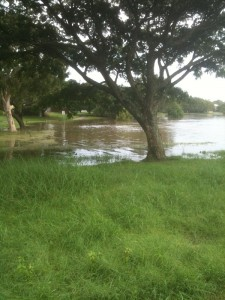 Goose ponds flood 2