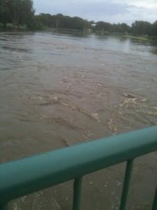 Goose ponds flood