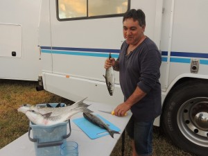 Filleting free fish