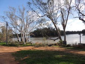 Murray River Boundry Bend