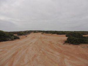 Wattelbee Reserve