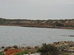 Wattlebee Reserve 3