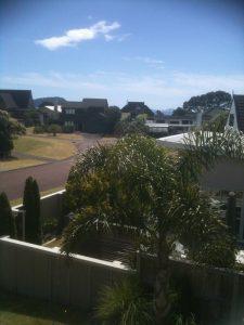pauanui